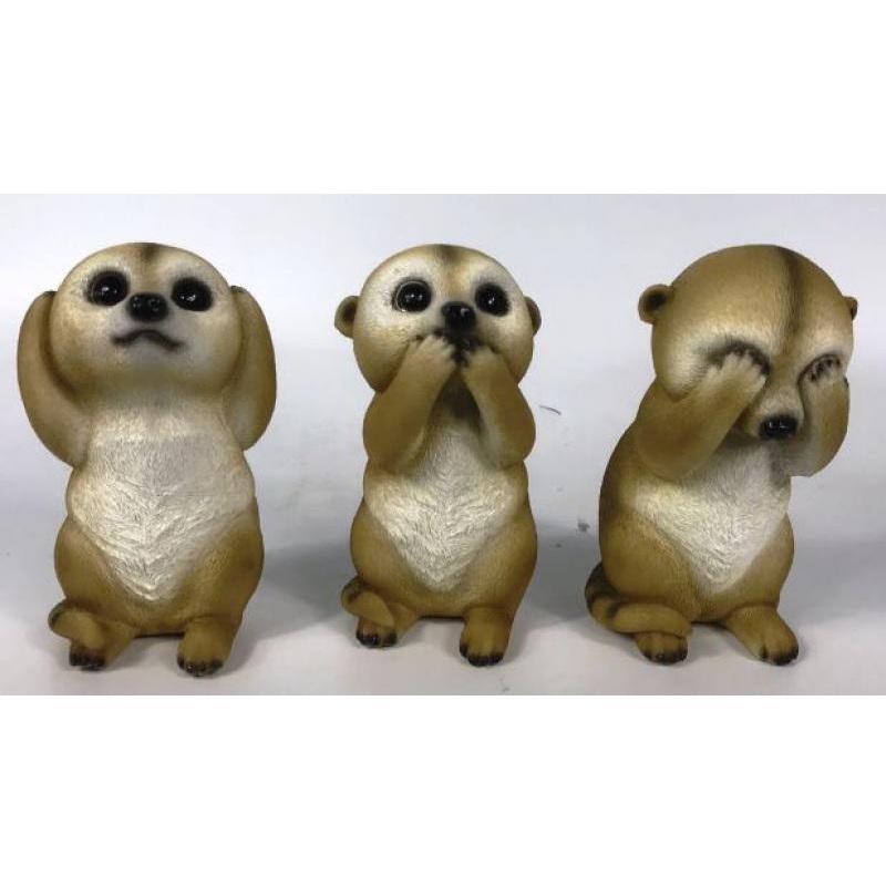 Wise Meerkats – Set of 3