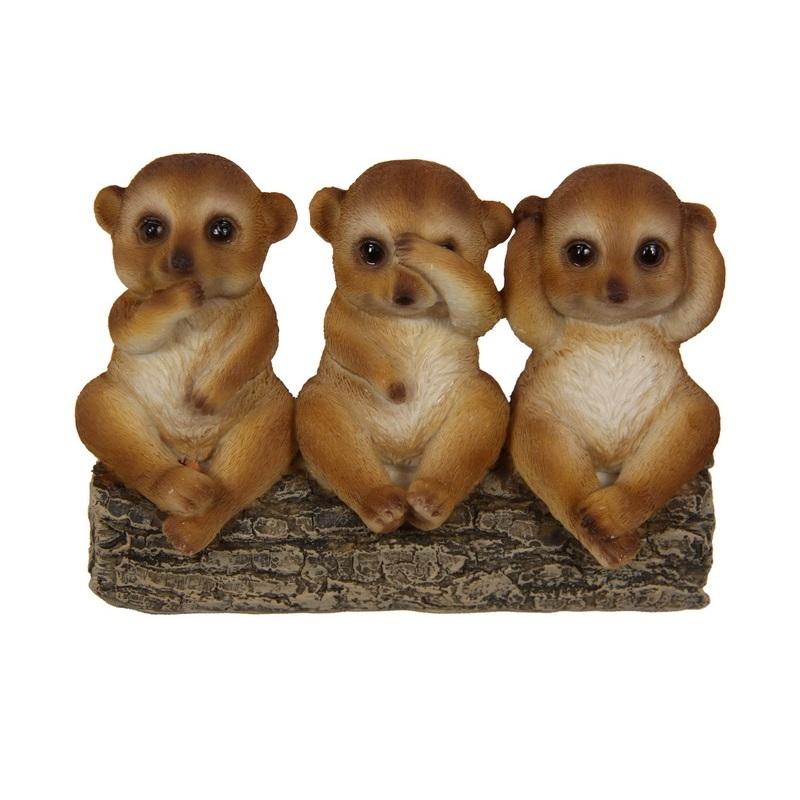 Wise Meerkats on Log